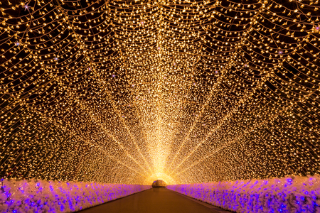 illuminations: Nagoya, Japan. Nabana no Sato garden at night in winter