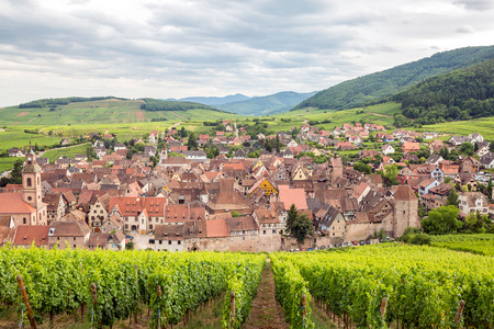 wine road: Riquewihr in the heart of the Alsatian vineyard Alsace France