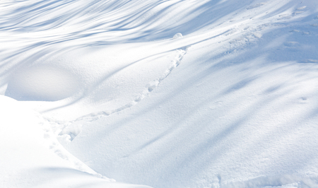 water waves: Snow texture using for winter background