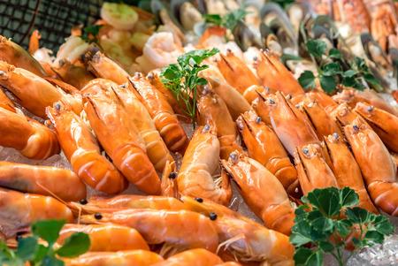 Freshly cooked prawns - shrimp on ice Standard-Bild