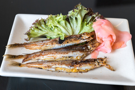 lanceolatus: grilled shishamo on white plate