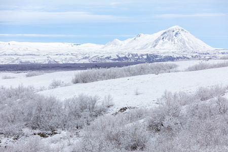 frozen lake: Winter landscape with snow covered trees at Dimmuborgir Lake Myvatn, Iceland