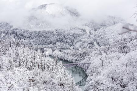 Winter landscape snow covered trees with train crossin River on Bridge Stock Photo