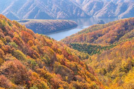 Nakatsugawa gorge from view point Azuma lake line at Urabandai Fukushima in autumn fall Japan