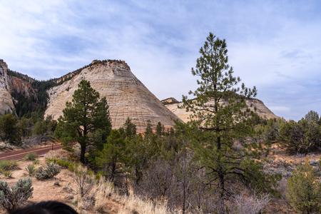 Checkerboard Mesa at Zion national park in Zion, Utah USA