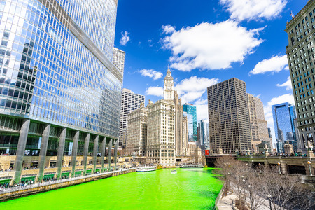 Chicago Skylines building along green dyeing river of Chicago River on St. Patricks day festival in Chicago Downtown IL USA