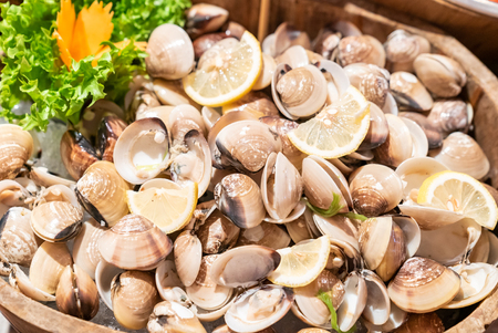 Clam Shell in Seafood on ice buffet bar Imagens