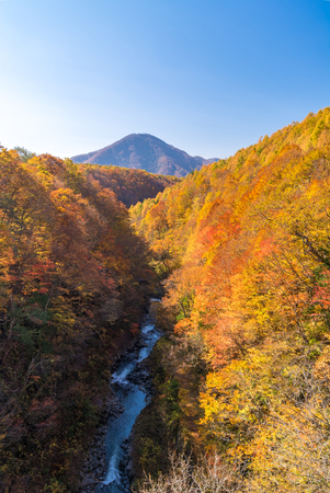 Nakatsugawa gorge from bridge at Fukushima in autumn fall Japan Stock Photo