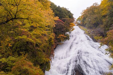 Autumn fall forest at Yudaki Falls at Nikko Tochigi Japan Imagens