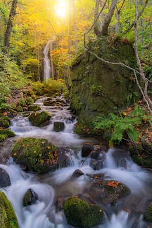 Oirase Autumn Fall Landscape of Forest woodland and waterfall in Aomori Tohoku Japan Stock fotó