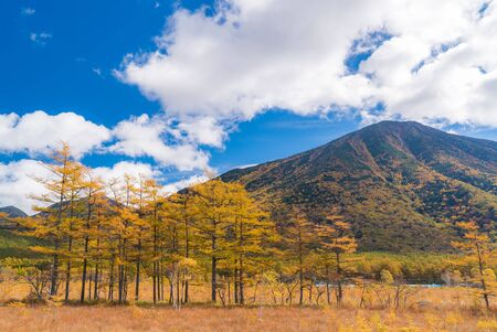 Autumn Fall Landscape of Senjogahara plateau Field Forest and mountain in Nikko Tochigi Japan