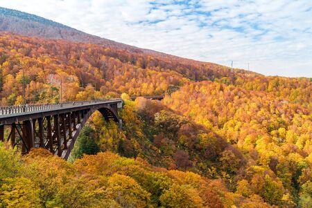 Autumn Fall Landscape of Forest and woods with Jogakura Ohashi Bridge in Aomori Tohoku Japan