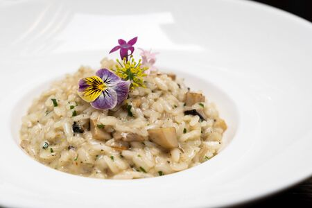 Creamy cheese risotto with mushroom and truffle oil decorate with yellow and purple flower. International italian gourmet cuisine a la carte in buffet live station. Using for food and drink industry.
