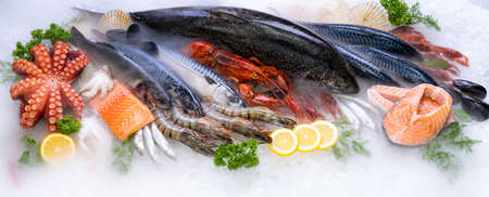 Panoramic web banner crop Top view of variety of fresh luxury seafood, Lobster salmon mackerel crayfish prawn octopus mussel and scallop, on ice background with icy smoke in seafood market. Banque d'images - 155226625