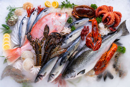 Top view Variety of fresh luxury seafood, Lobster salmon mackerel crayfish prawn octopus mussel red snapper scallop and stone crab, on ice background with icy smoke in seafood market. Banque d'images - 155226634