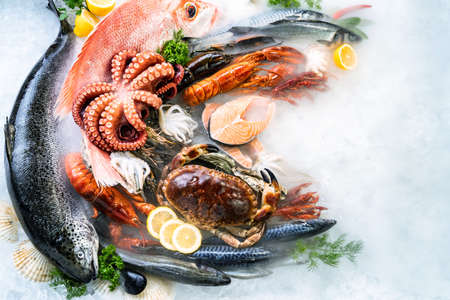 Top view of variety of fresh luxury seafood, Lobster salmon mackerel crayfish prawn octopus mussel red snapper scallop and stone crab, on ice background with icy smoke in seafood market.