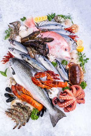 Top view Variety of fresh luxury seafood, Lobster salmon mackerel crayfish prawn octopus mussel red snapper scallop and stone crab, on ice background in seafood market. Banque d'images