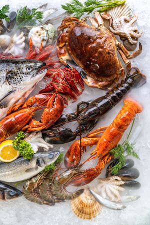 Top view Variety of fresh luxury seafood, Lobster salmon mackerel crayfish prawn octopus mussel red snapper scallop and stone crab, on ice background with icy smoke in seafood market. Banque d'images - 155569093