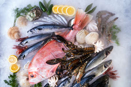 Top view Variety of fresh luxury seafood, Lobster salmon mackerel crayfish prawn octopus mussel red snapper scallop and stone crab, on ice background with icy smoke in seafood market. Banque d'images