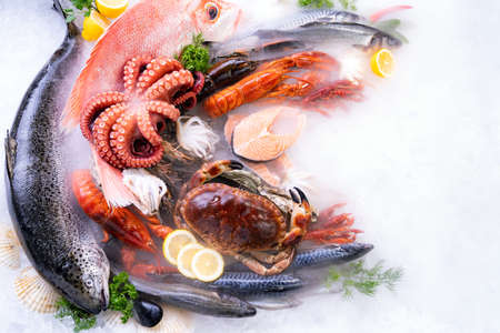 Top view of variety of fresh luxury seafood, Lobster salmon stone crab mackerel crayfish prawn octopus mussel and scallop, on ice background with icy smoke in seafood market. Photo With Copy space.