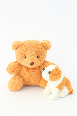 Teddy Bear and brown dog dolls, brown ears on a white background.