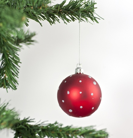 Red Christmas ball hanging from a branch