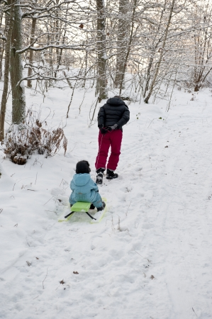to steer a sledge: Mother pulling snow sledge up a hillside