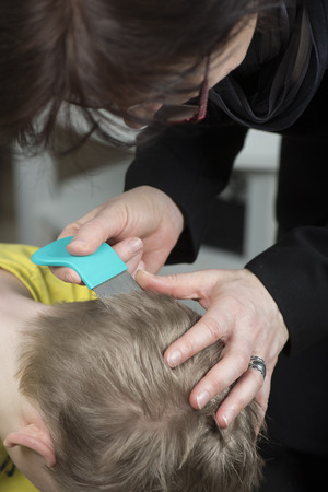 lice: Mother checking childs head for lice with a comb