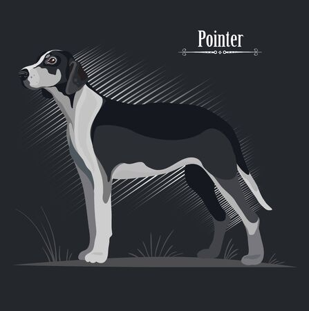 hunting dog stands on a black background, style, exposure, breed.