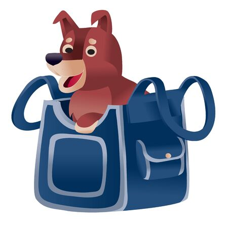 brown dog sitting in a blue carrier and waiting when he goes on a trip by plane or train, isolated object on a white background,