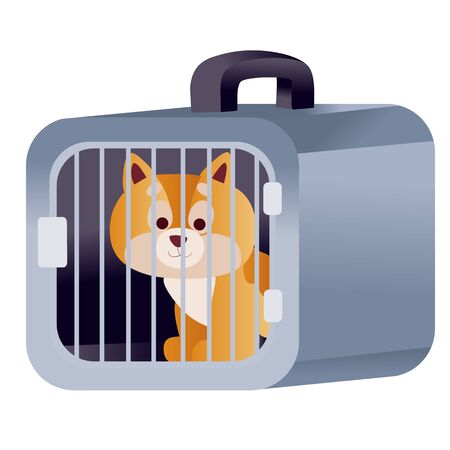 red cat sits in a blue carrier and waits when it travels by plane or train, isolated object on a white background, vector illustration