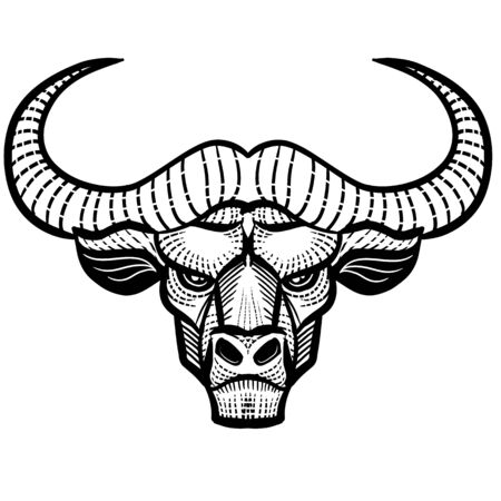 decorative bull head with patterns for logo, label, packaging, tattoo, isolated object on a white background,
