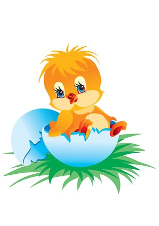 yellow chick just hatched from an egg and sits in half shell on green grass, vector illustration