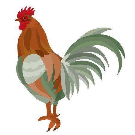beautiful stylish farm cock cartoon isolated on a white background.