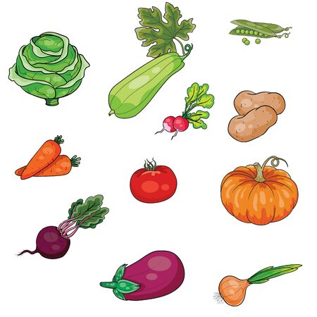 set of vegetables, diet, vegetarianism, stylization, isolated object on a white background, vector illustration, eps 版權商用圖片 - 149485819