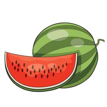berry watermelon whole and part thereof, cartoon illustration, isolated object on white background, vector illustration, eps Stock Illustratie