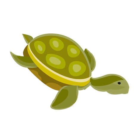 sea green turtle, cartoon illustration, isolated object on white background, vector, eps