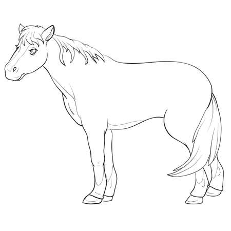 horse sketch from farm, coloring book, cartoon illustration, isolated object on white background, vector, eps