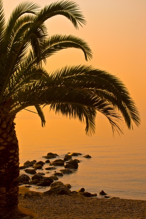 Beautiful beach sunrise landscape photo