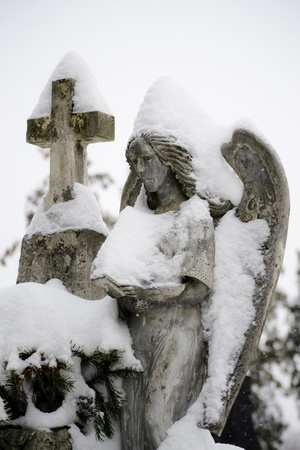 Close up of a stone angel statue covered with snow photo