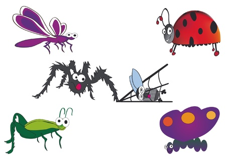 insects,bugs Vector