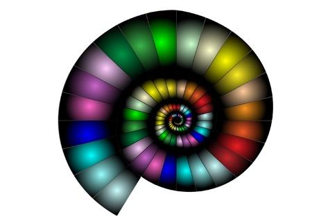 conchas: Un nautilus en colores et�reos