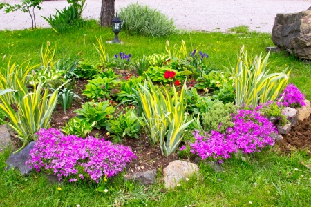 small garden 版權商用圖片 - 14219611