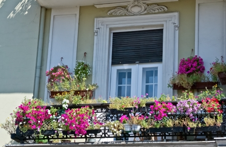 old balcony with flowers Stock Photo - 15226830