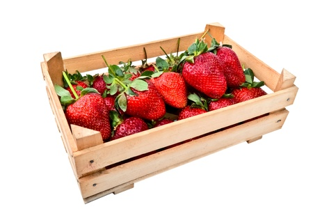 fresh strawberries in an open crate isolated over white photo