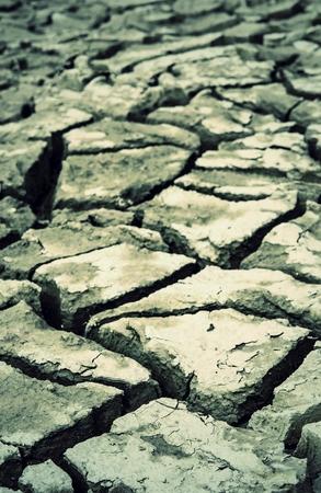 dry land: cracked dry land soil