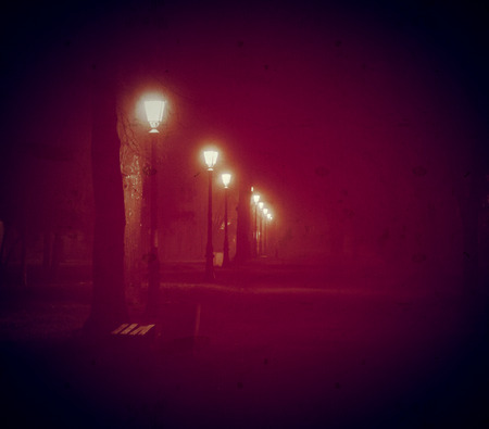 Park in a fog vintage photo halloween background 스톡 콘텐츠