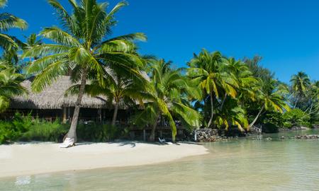 bora bora tropical beach 版權商用圖片