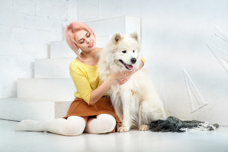 attractive young girl with short blond hair in a yellow sweater and skirt hugs her beloved pet - a dog breed Samoyed and rather looks at it Stock Photo