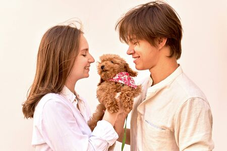 A studio shot of young couple holding their cute ginger poodle puppy, looking at him with love and happy smiles. Concept of friendly relationship between dog and human.